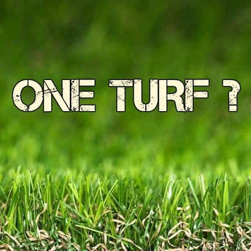 One Turf Concept Announced At Turf Industry Meeting In Las Vegas!